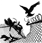 g-r-grecia-rilasciato-compagno-anarchico-panagioti-1.jpg