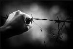i-u-italy-updates-scripta-manent-anarchist-comrade-3.png