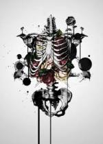 r-i-radioazione-italia-septemberish-carcasses-oper-1.jpg